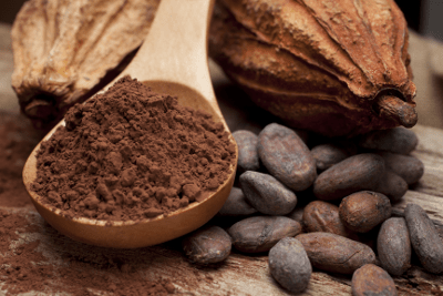 fresh-cocoa-beans-contains-10-percent-weight-flavanols